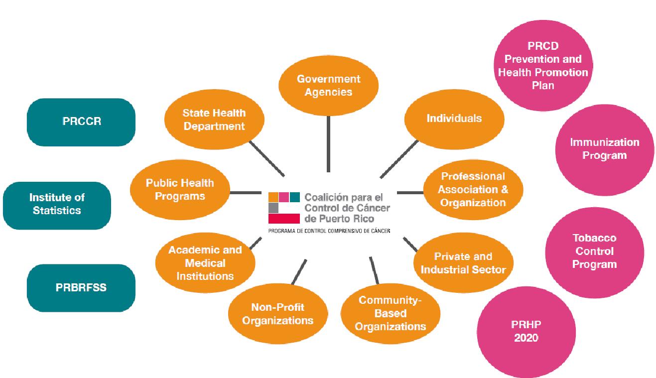 PR Coalition Flow Chart(1).png